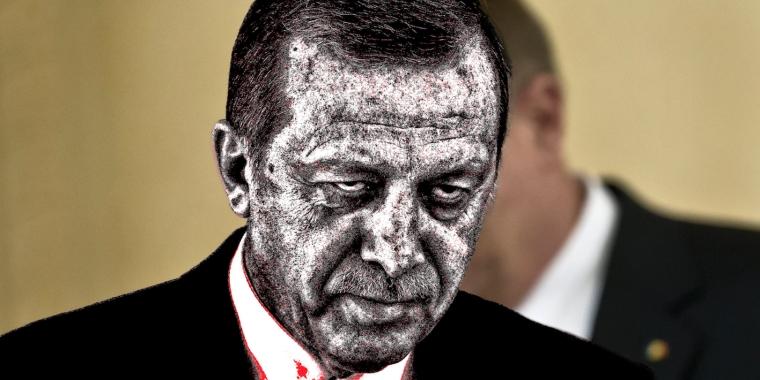 Erdogan Zombie