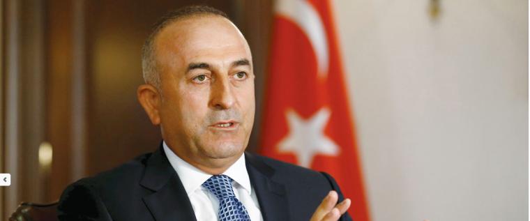 Cavucoglu, MP Turkey
