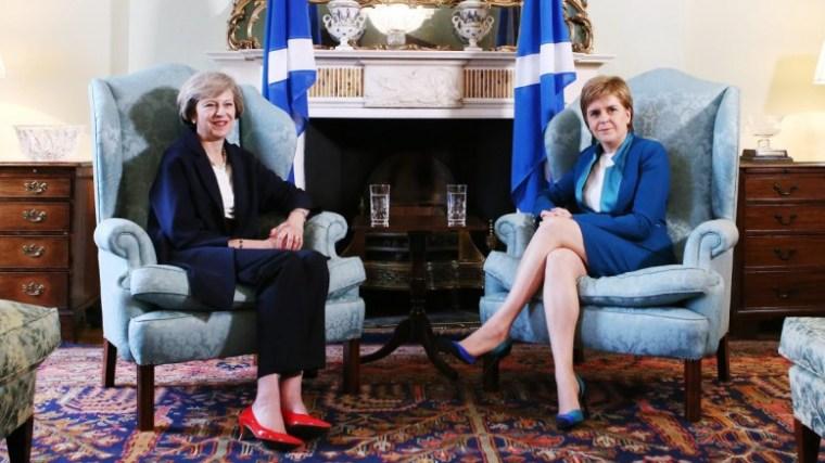 may-sturgeon