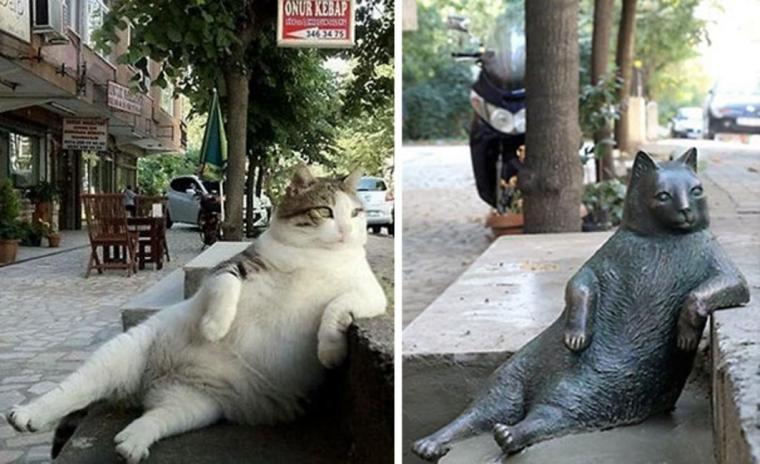 tombili-cat-statue